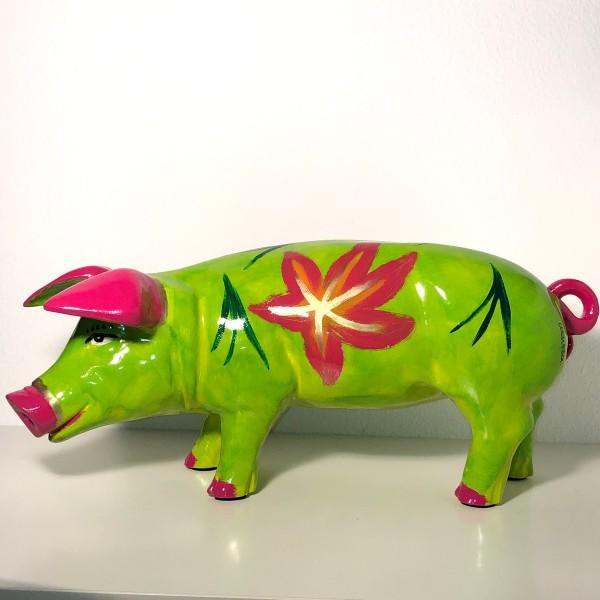 Ferkel Lilly grün mit pink Blüten